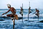 ШРИ ЛАНКА – островът като сълза, богат на дива  природа и останки от ранни цивилизации!